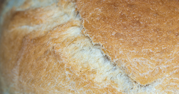 Pan en Pirex - Primer plano